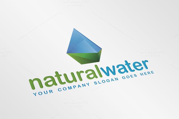 Natural Crystal Water Droplet Logo