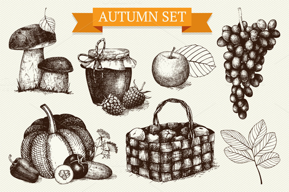 Ink Hand Drawn Autumn Sketch Set
