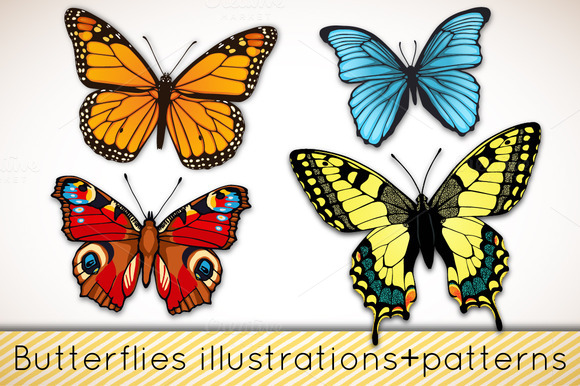 Butterflies Patterns Illustrations