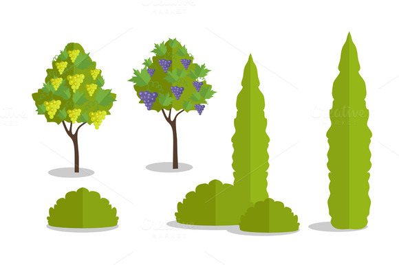 Set Of Isolated Trees And Bushes