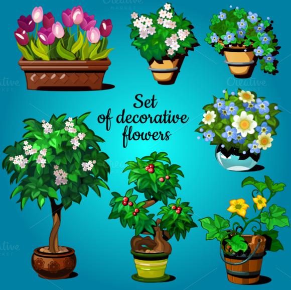 Set Of Decorative House Plants