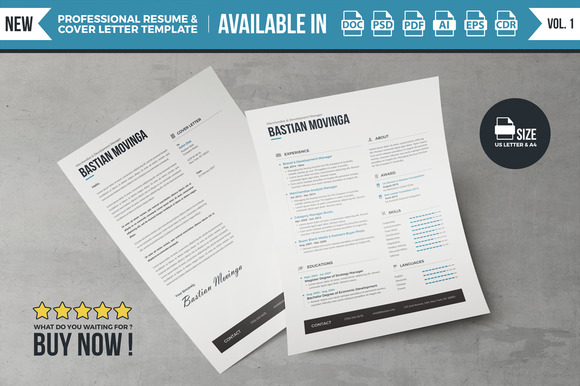 Best Professional Resume Vol 1