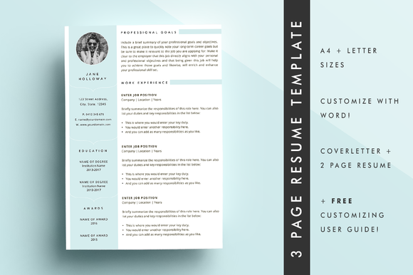 Resume CV Template 3 Page