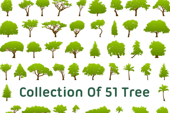 Collection Of 51 Tree