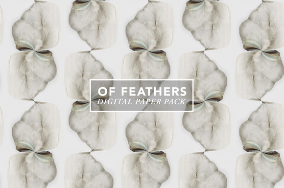 Of Feathers Digital Paper Pack