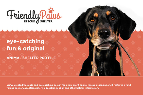 Friendly Paws Shelter PSD Template