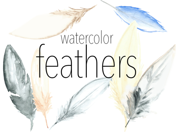 Watercolor Feathers Cliparts