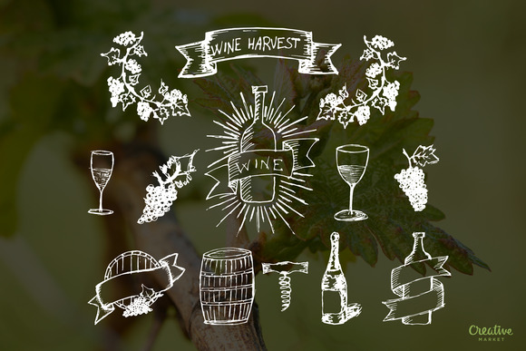 Hand Drawn Wine Elements