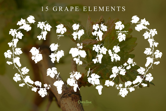 15 Grape Elements Silhouette