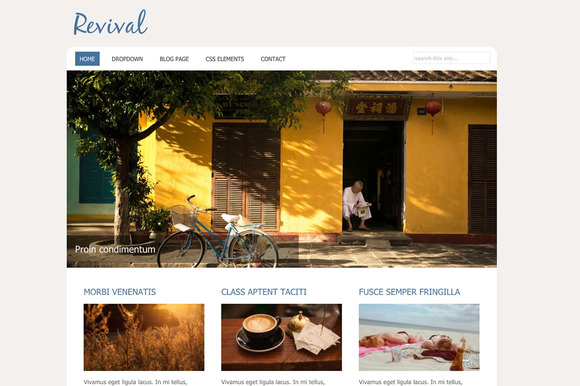 Revival Small Business WP Theme