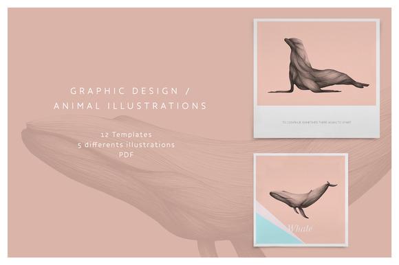 Graphic Design Animal Illustration
