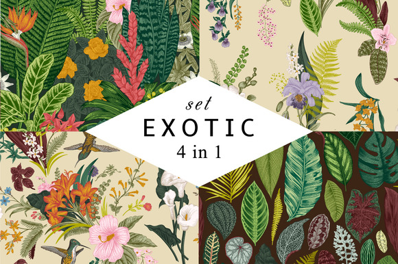 Exotic Patterns Set Colorful