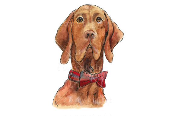 Hunting Dog Watercolour Illustration