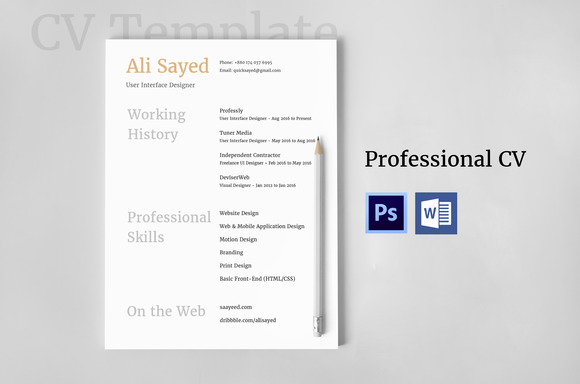 Modern CV For Web IT Professionals
