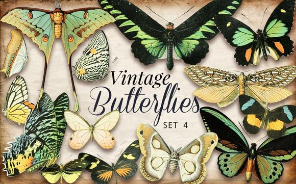 Vintage Butterflies Set 4