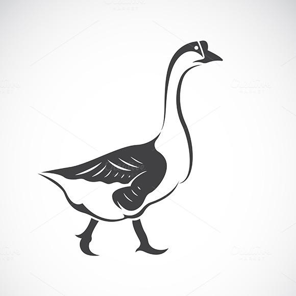 Vector Image Of A Goose Bird