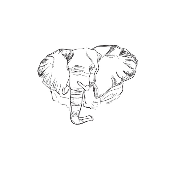 Elephant Sketch Style Vector