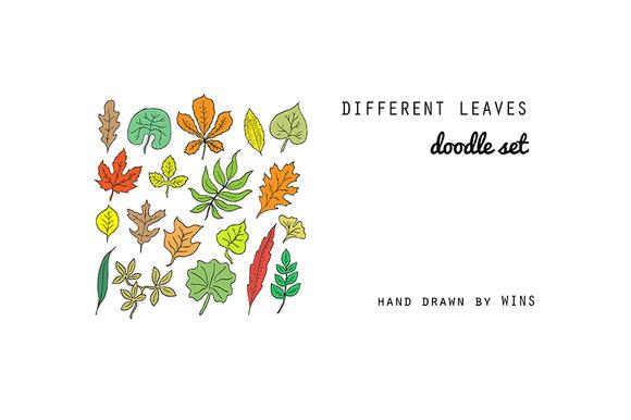 Leaves Doodle Set