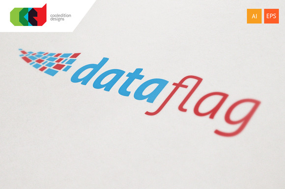 Data Flag Logo Template