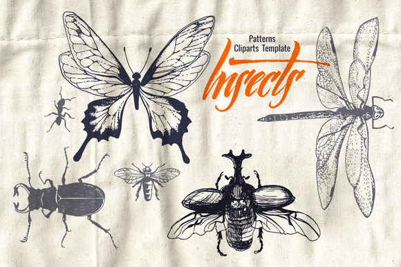Insects In Patterns And Cliparts