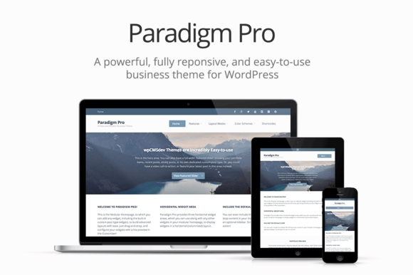 Paradigm Pro Modern Business Theme