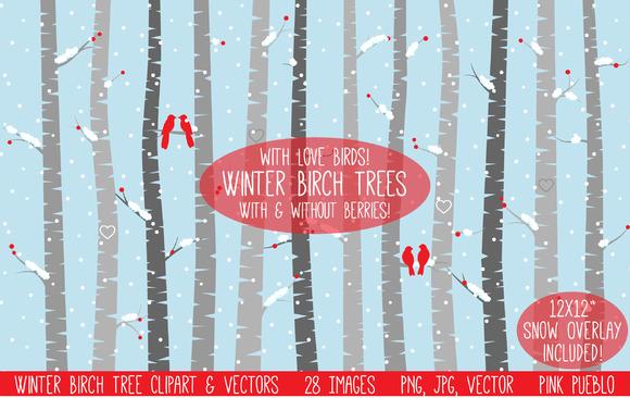 Winter Birch Tree Clipart Vectors