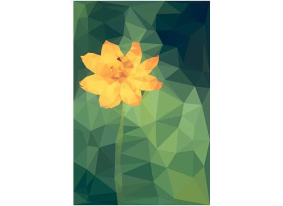 Polygonal Of Cosmos Flower