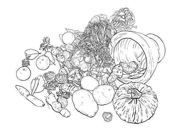 Drawing Still Life Of Food And Veget