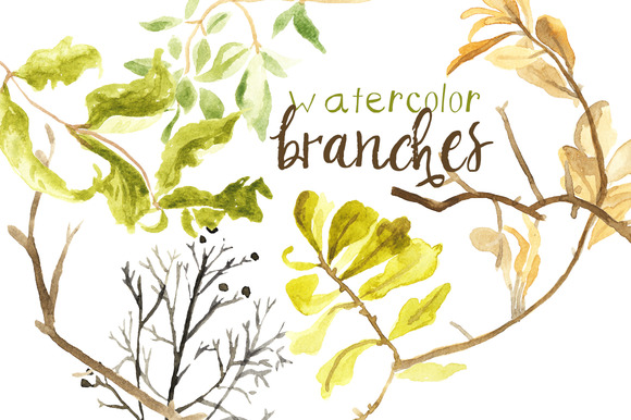 Watercolor Fall Branches