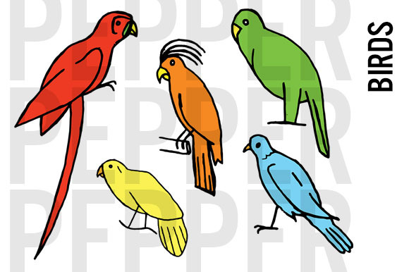 Bird Doodle Clipart