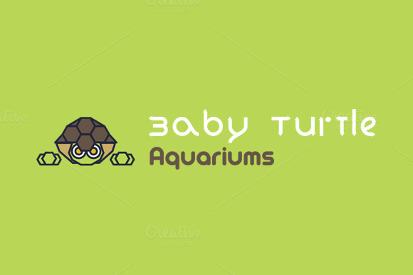 Baby Turtle Aquariums