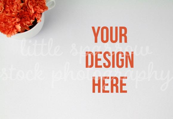 Coral Carnations Desktop Mock Up
