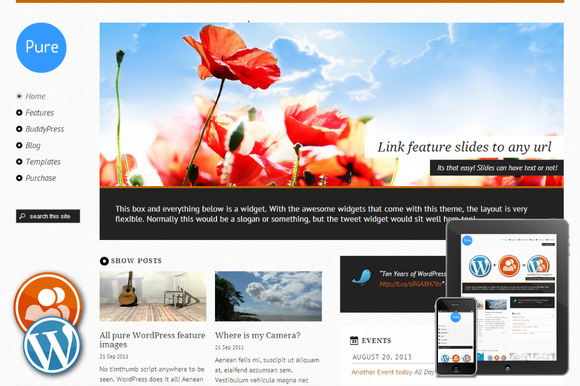 Pure Responsive WordPress Theme