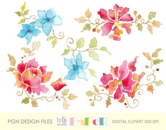 Natural Flowers Watercolor