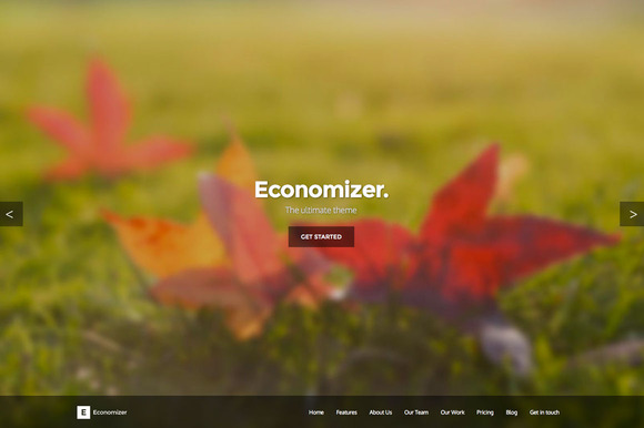 Economizer HTML5 CSS3 One Page Theme