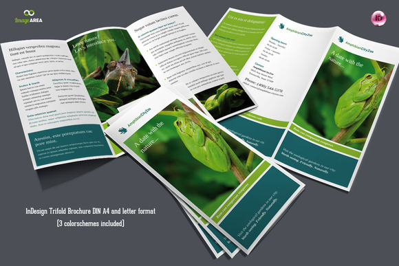Flexible Trifold Brochure 3 Colors