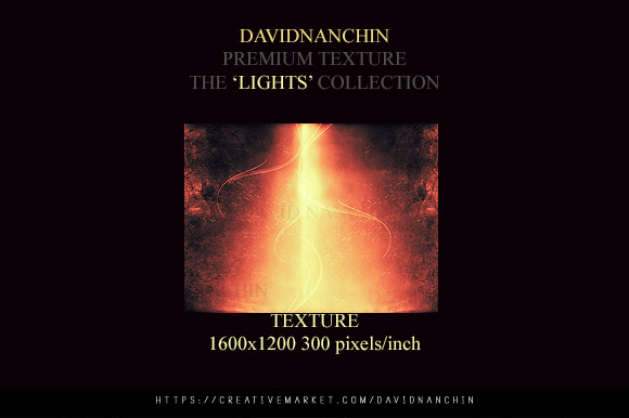 The Lights Collection Xx01