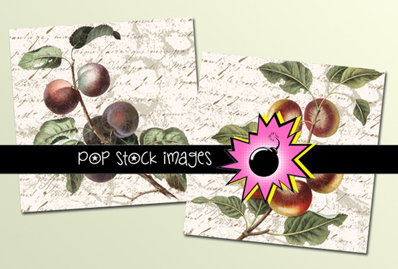 Vintage Fruit Art Or Journal Tags