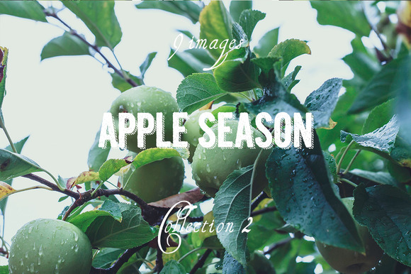 Apple Season Photoset Coll 2