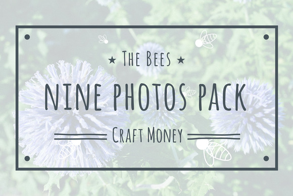 The Bees Nine Photos Pack
