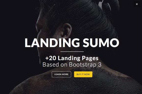 LandingSumo 20 Landing Pages
