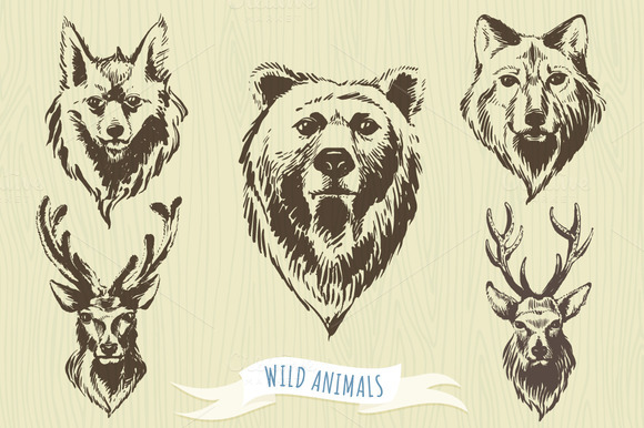 Set Of Hand-drawn Wild Animals