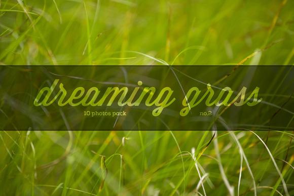 Dreaming Grass No.2 10 Photoset