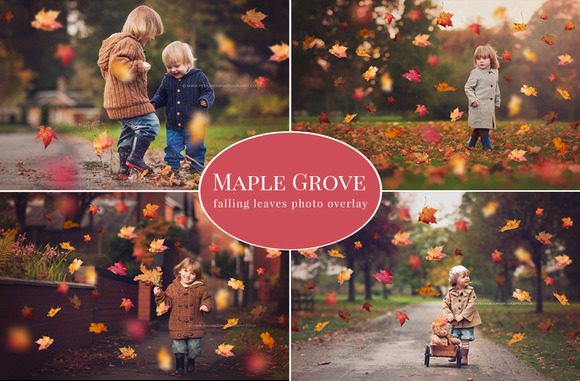 Maple Grove Falling Leaves Overlay