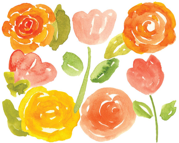 Watercolor Rose Elements Handpainted