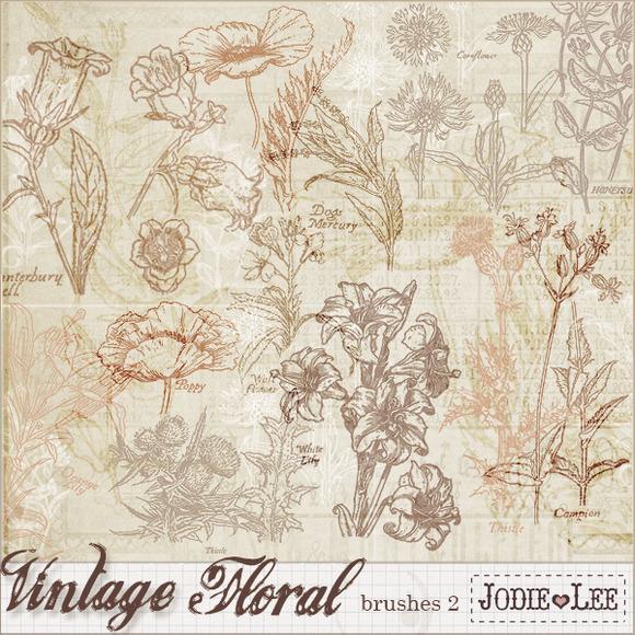 Vintage Floral Brushes 2
