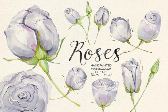 Watercolor Clip Art Lilac Roses