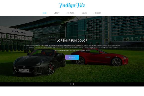 Indigo Biz Responsive One Page Theme