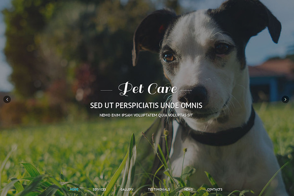 Pet Care Responsive One Page Theme