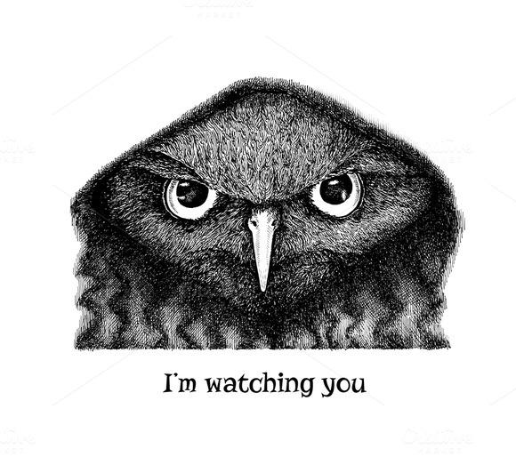 I M Watching You